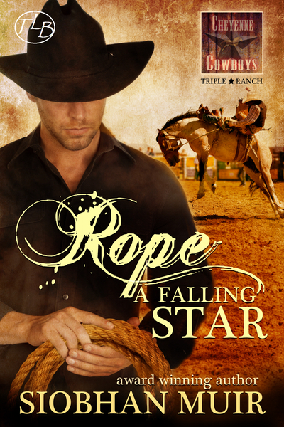 https://siobhanmuir.com/rope-a-falling-star